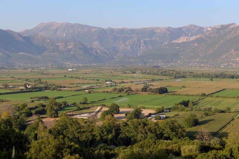 landwirtschaft Mais wachsendes Fanariu-Tal, Epirus, Griechenland lizenzfreie stockfotografie