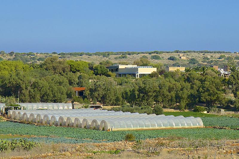 Landwirtschaft in Malta stockfotografie