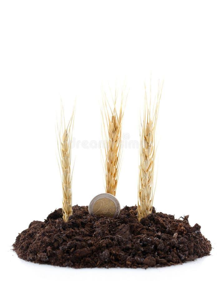 Landwirtschaft und Etat stockbilder