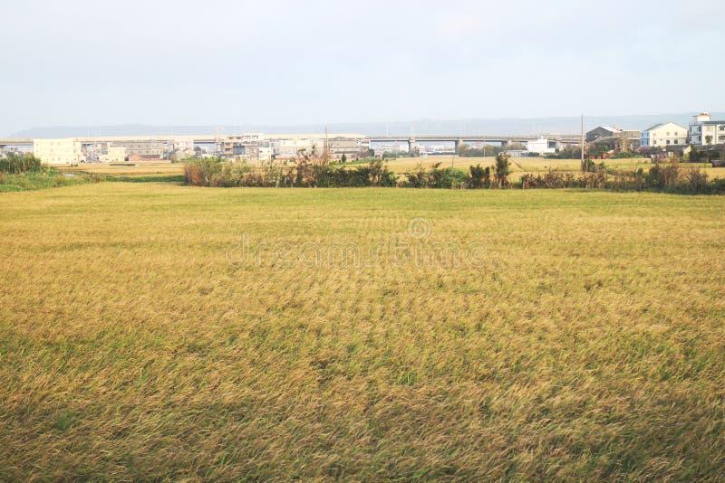 landwirtschaftlich stockbilder