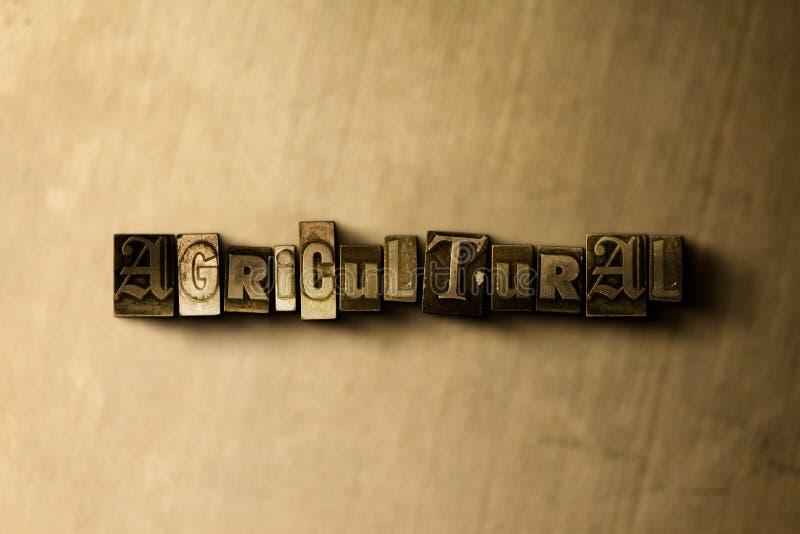 LANDWIRTSCHAFTLICH - Nahaufnahme der grungy Weinlese setzte Wort auf Metallhintergrund lizenzfreie abbildung