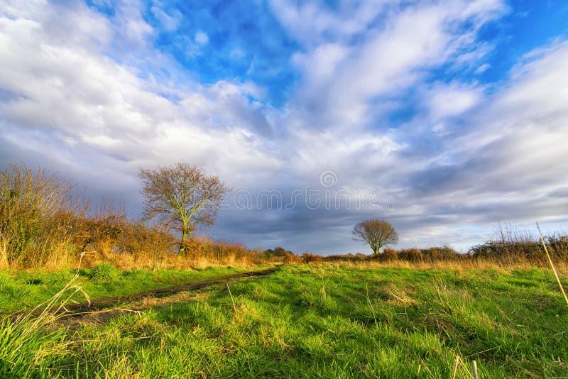 Landwirtschaftliche englische Landschaft lizenzfreies stockbild