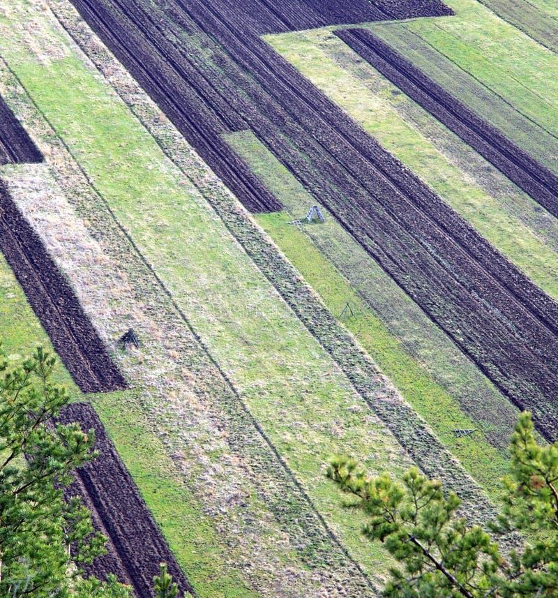 Landwirtschaftliche Felder lizenzfreie stockfotos