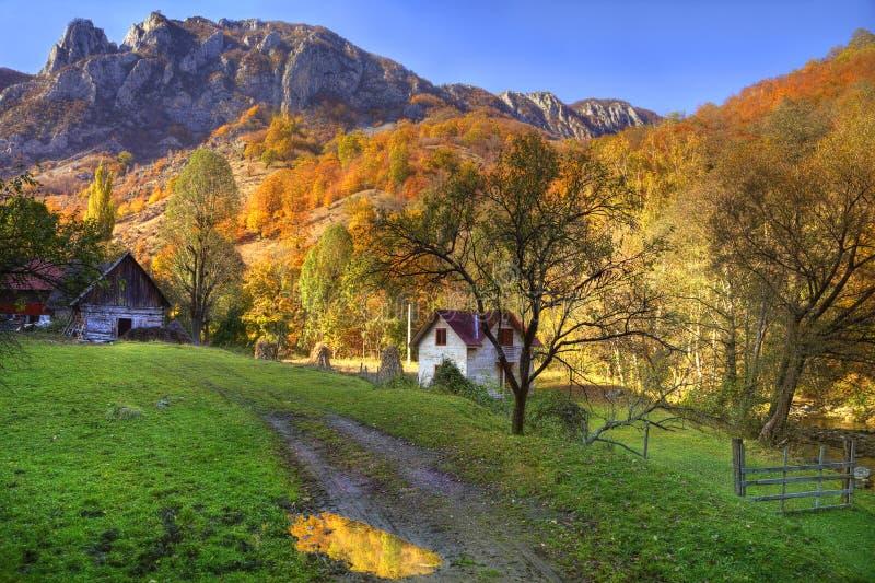 Landwirtschaftliche Herbstlandschaft lizenzfreie stockfotos