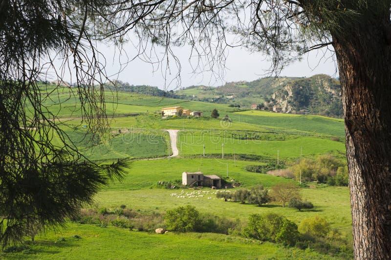 Download Landwirtschaftliche Landschaft Stockbild - Bild von gras, nave: 9090381