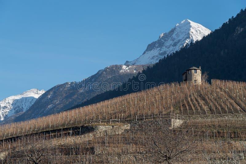 Landwirtschaftliche Landschaft auf den Hügeln vom Aostatal, Italien stockbilder