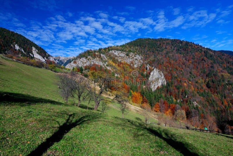 Landwirtschaftliche Landschaft des Herbstes in den Rumänien-Bergen lizenzfreie stockfotografie