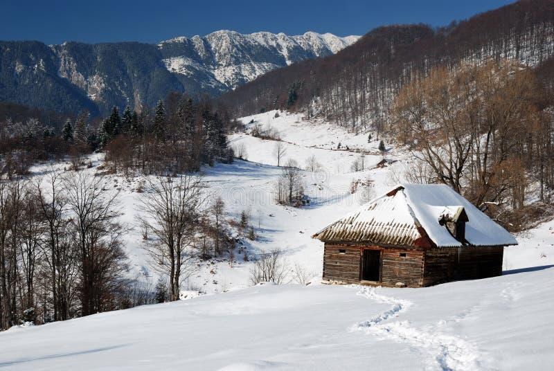 Landwirtschaftliche Landschaft des Winters in Rumänien lizenzfreies stockbild