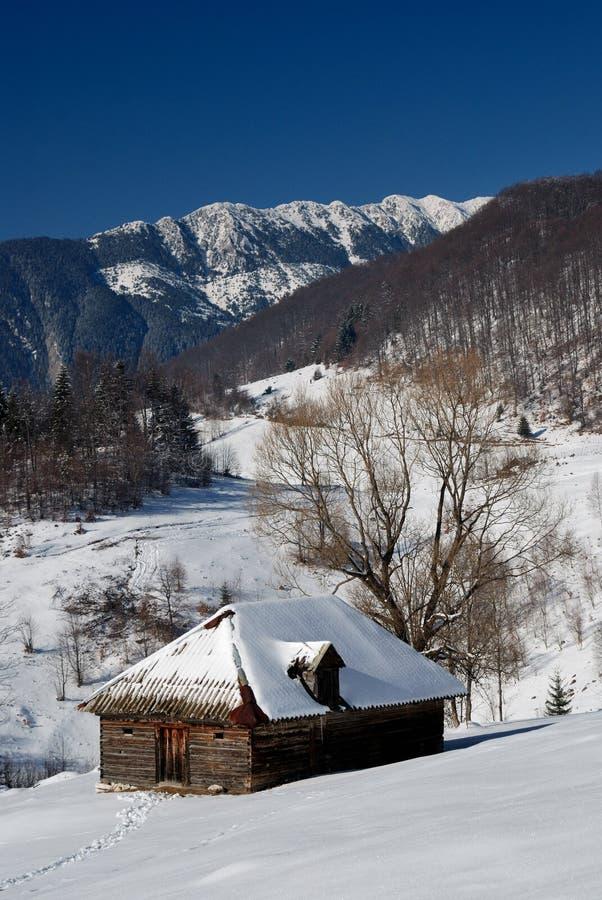 Landwirtschaftliche Landschaft des Winters in Rumänien lizenzfreie stockbilder