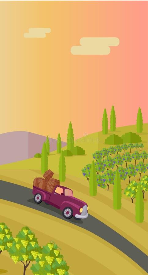 Landwirtschaftliche Landschaft mit Weinberg stock abbildung