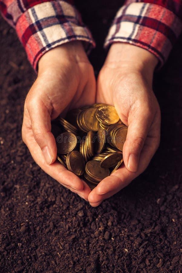 Landwirtschaftliche Produktivität, Geldertrag und Einkommen nach Ernte lizenzfreie stockbilder
