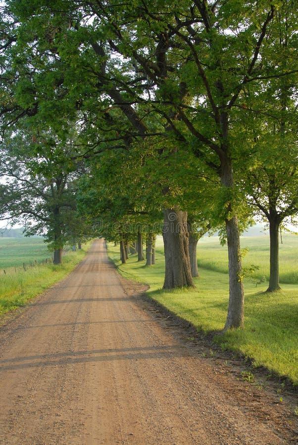 Landwirtschaftliche südliche Michigan-Straße lizenzfreies stockfoto