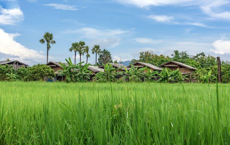 Landwirtschaftliche Stadt stockfoto