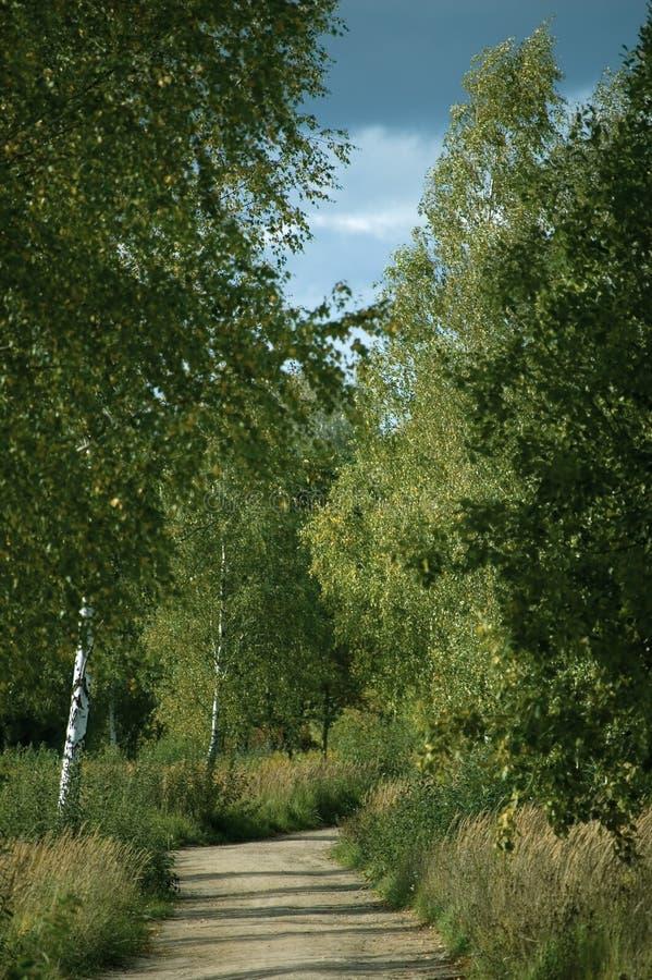 Landwirtschaftliche Straße vektor abbildung
