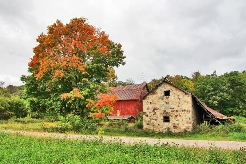 Landwirtschaftliche Straße im Herbst stockbilder