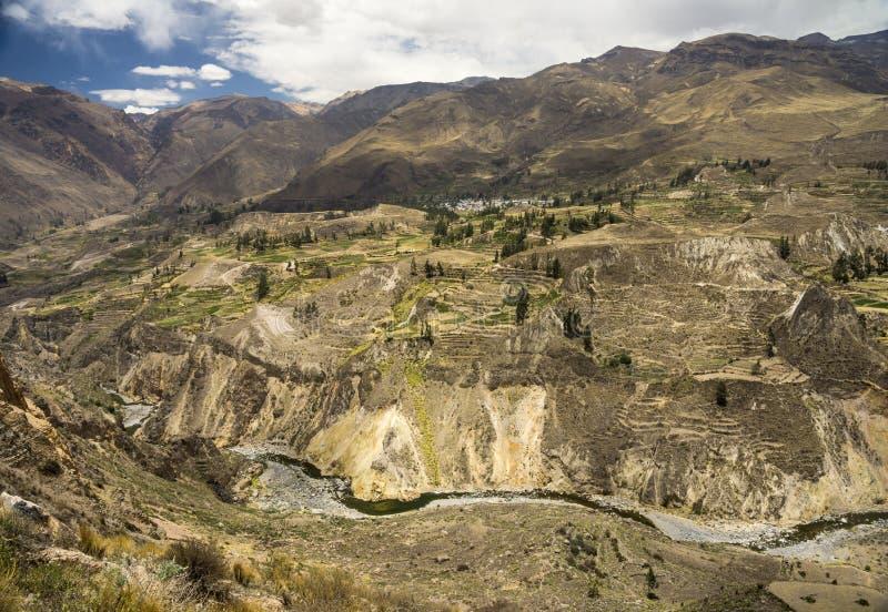 Download Landwirtschaftliche Terrassen Und Colca-Fluss Arequipa, Peru Stockfoto - Bild von peru, landschaft: 90231728