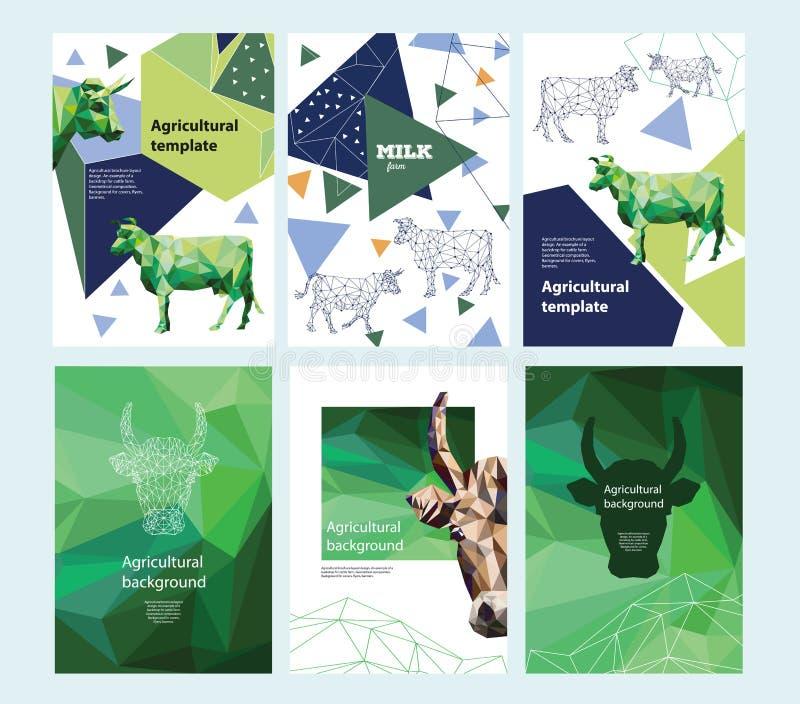 Landwirtschaftlicher Broschürenplanentwurf Polygonales Porträt einer Kuh geometrische Zusammensetzung Ein Set Fahnen stock abbildung
