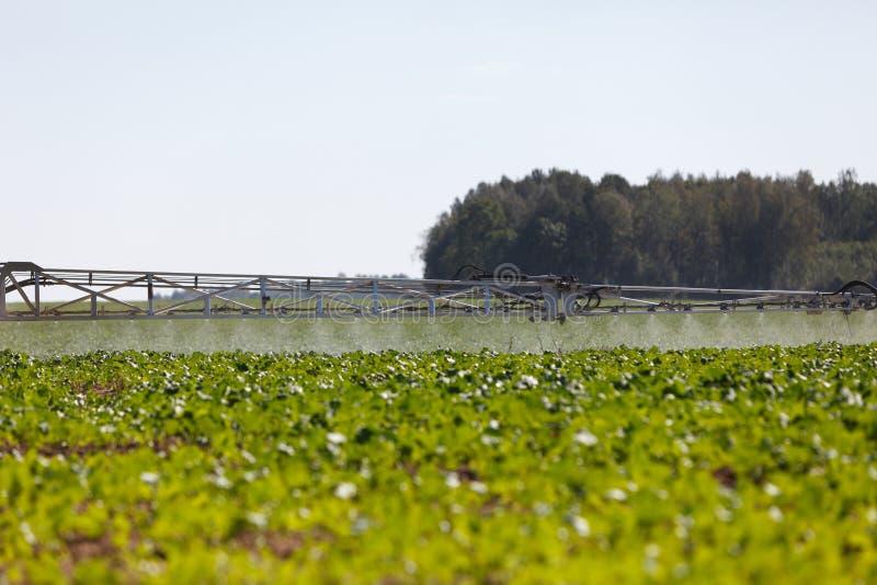 Landwirtschaftlicher chemischer Sprüher stockbild