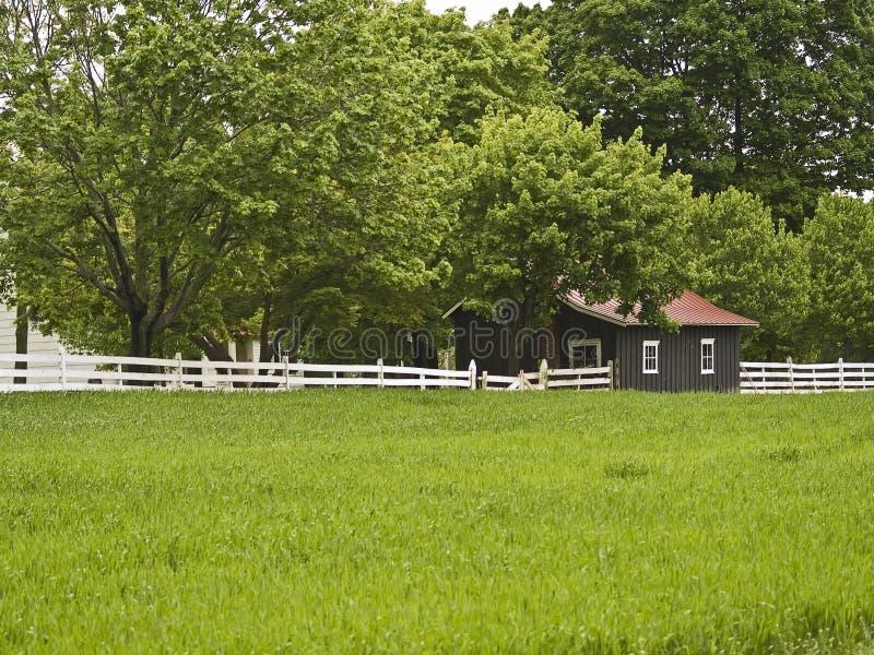 Landwirtschaftlicher Frühling lizenzfreie stockfotografie