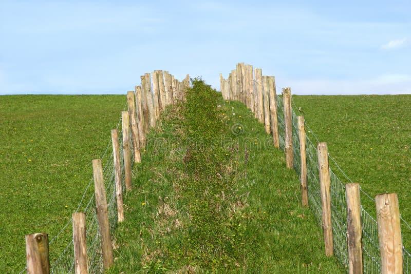 Landwirtschaftliches Fechten stockfotografie