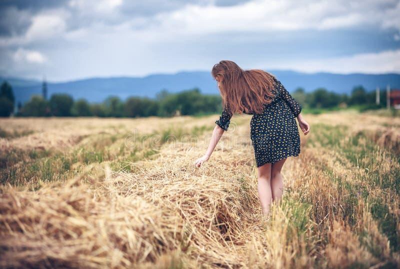 Landwirtschaftliches Mädchen auf dem Gebiet lizenzfreie stockfotografie