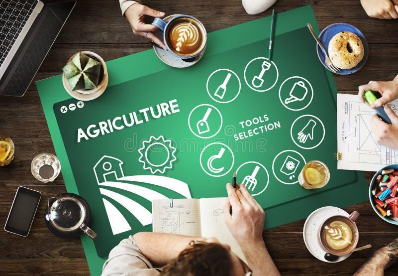 Landwirtschafts-Bauernhof-Ernte-Produktions-Betriebskonzept stockbild