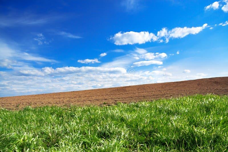 Landwirtschaftsackerlandfeld im Frühjahr für Ernten stockbilder