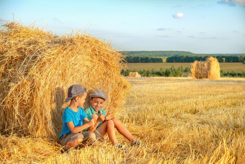 Landwirtschaftserntekonzept Zwei Jungen lassen Spaß an einem Heuschober auf einem Gebiet an einem sonnigen Tag sitzen und stehen  stockfoto