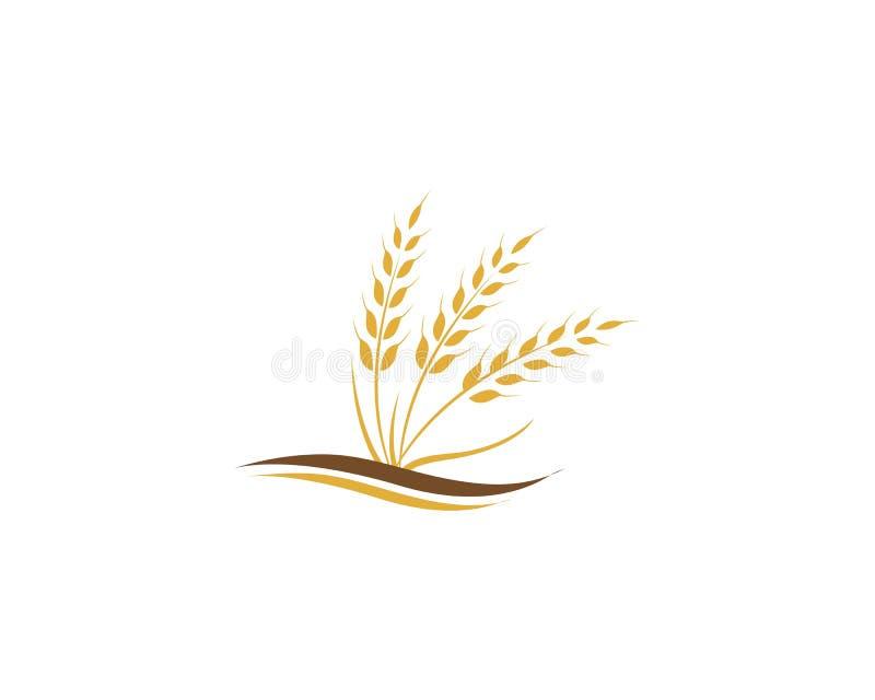 Landwirtschaftsweizen Logo Template vektor abbildung