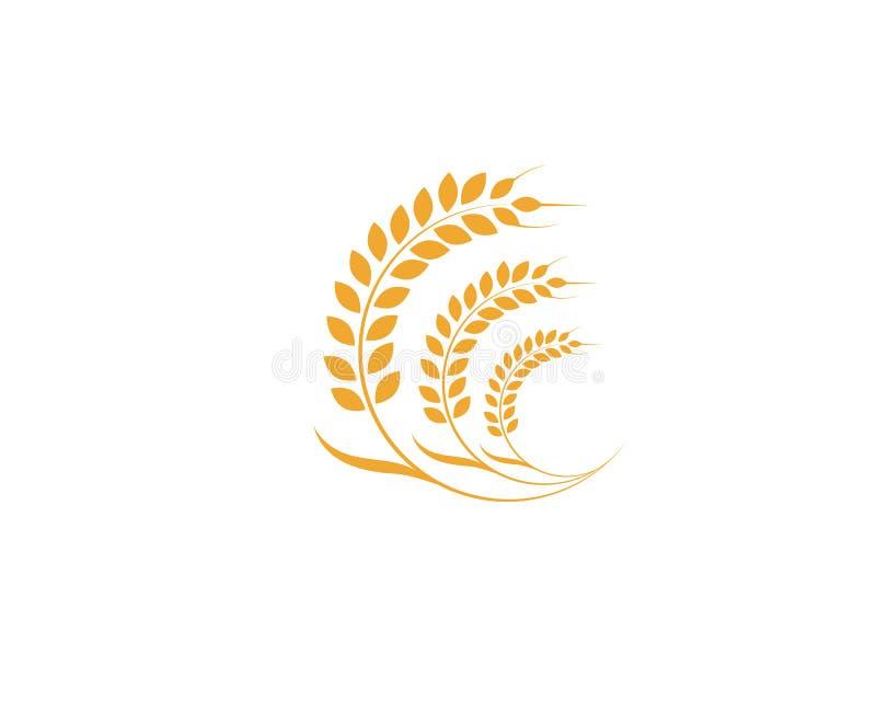 Landwirtschaftsweizen Logo Template-Vektorikonendesign vektor abbildung