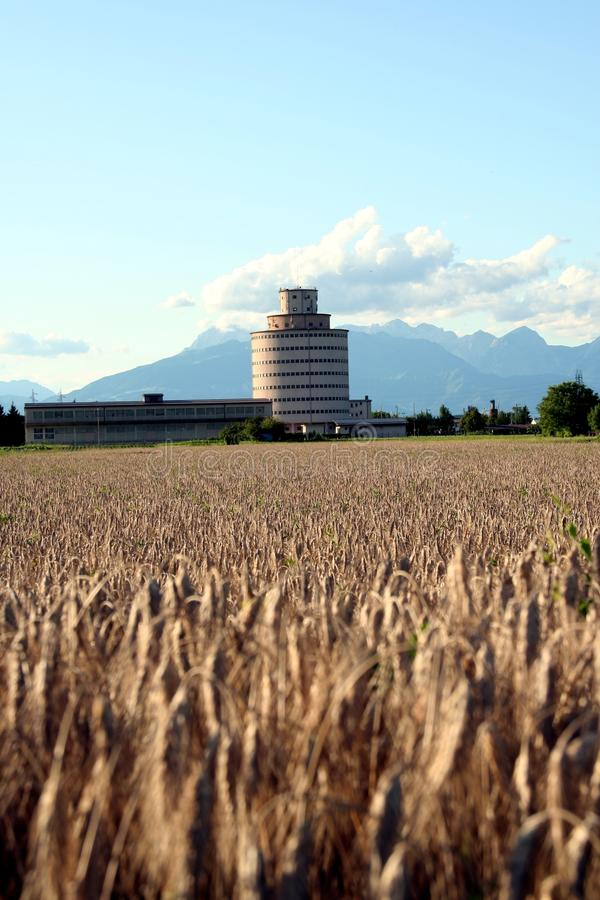 Landwirtschaftswirtschaftlichkeit stockbilder