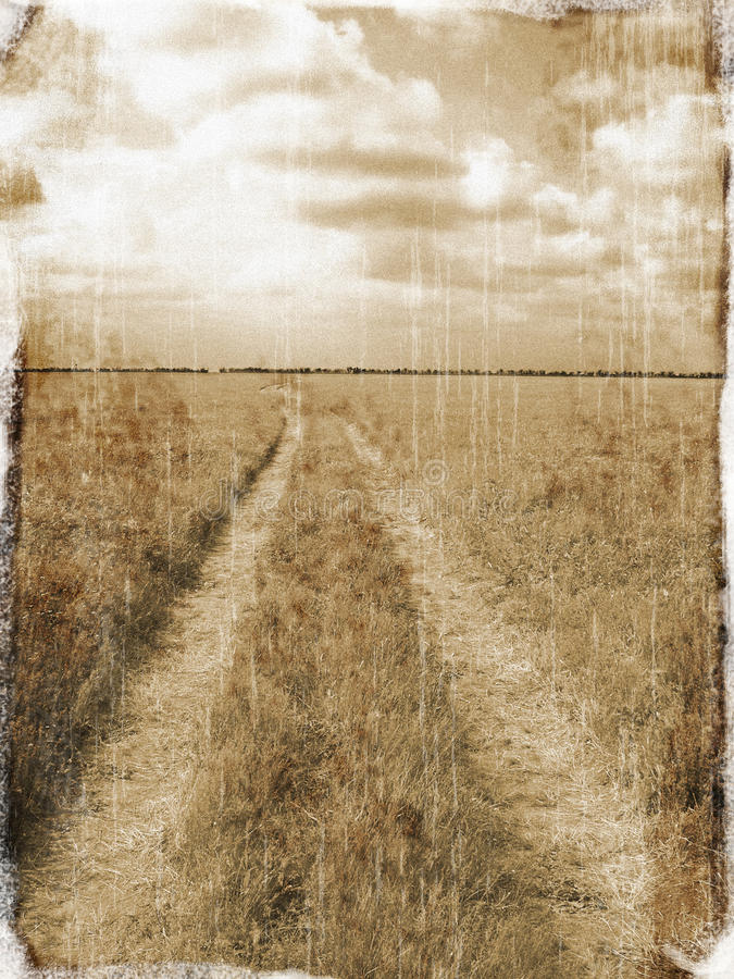 Lane across a field royalty free stock photos