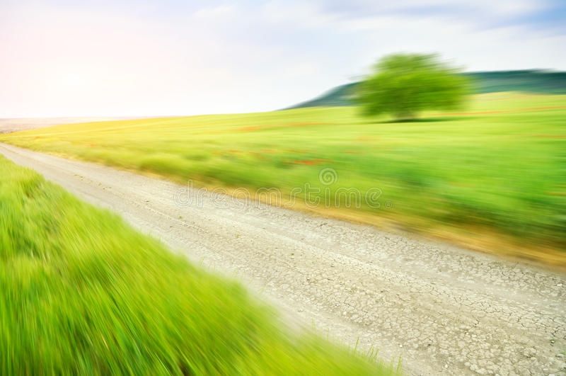 Lane in meadow and deep blue sky. royalty free stock photos