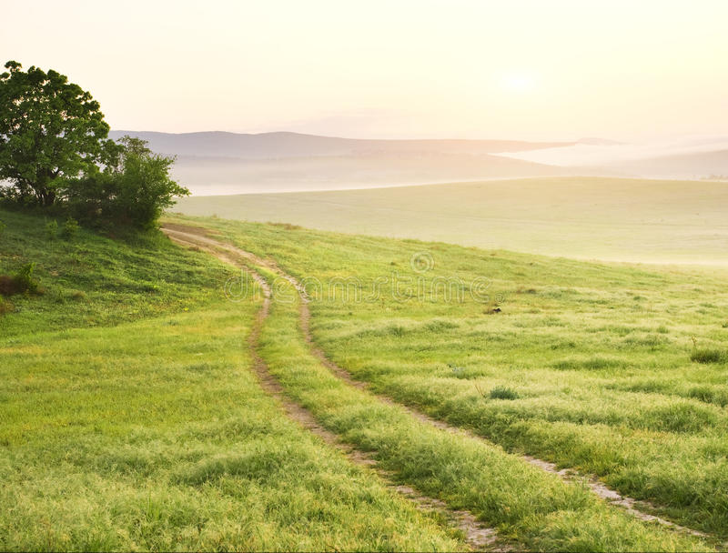 Lane in meadow and sunrise. stock photos