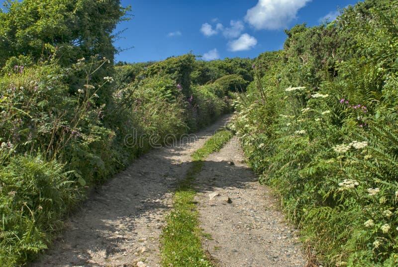 Laneway Carn Euny, Cornwall zdjęcie royalty free