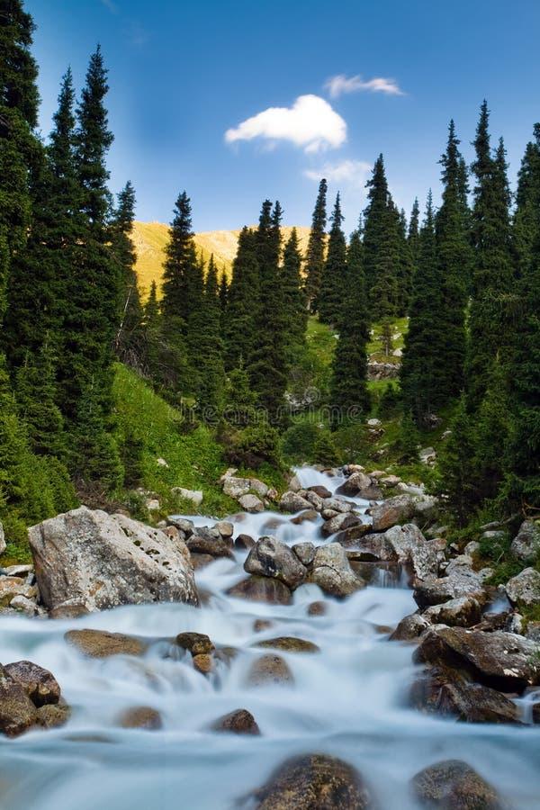 Lang blootstellingsbeeld van de dalende en stromende trog van de bergrivier royalty-vrije stock afbeelding