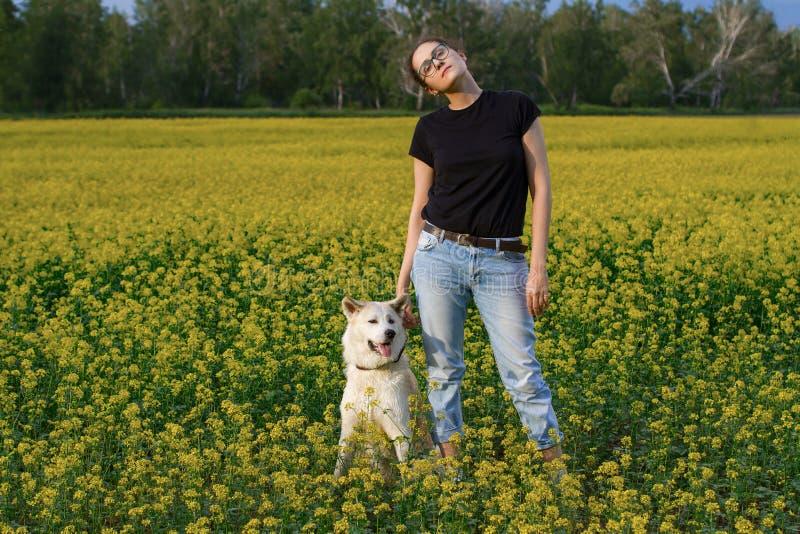 Lang jong mooi meisje in zwarte T-shirt en jeans en Japanse Akita Inu-hond op een gebied onder gele wilde bloemen in de zomer stock fotografie