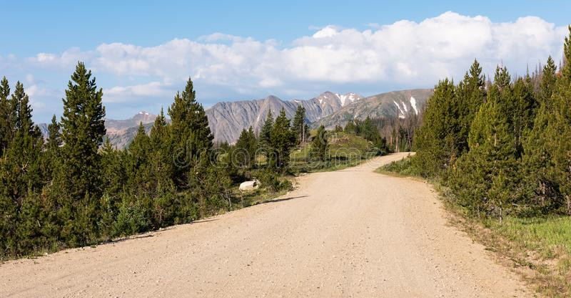 Lang trek Weg dichtbij de Pas Colorado van La Poudre stock fotografie