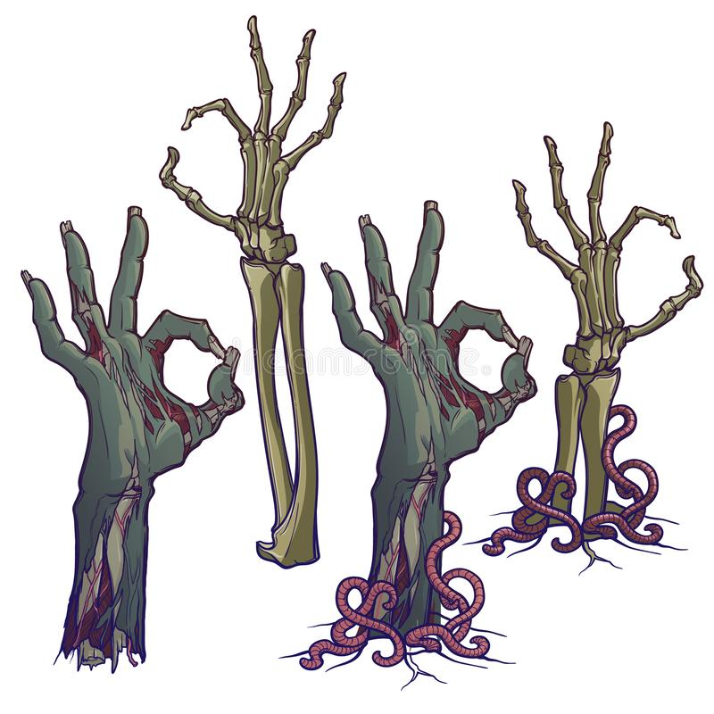 Langage du corps de zombi Approuvez le signe description réaliste de l'éclair de décomposition avec la peau en lambeaux, os saill illustration libre de droits
