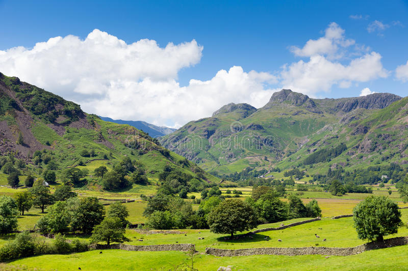Langdale Valley Lake District Cumbria England UK in summer with blue sky and clouds scenic. Langdale Valley Lake District Cumbria England UK in summer scene with stock images