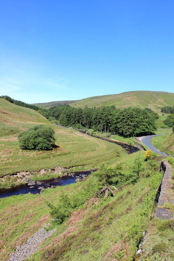Langden bäck, ho av Bowland, Lancashire royaltyfri bild