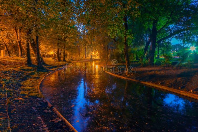 Lange Belichtung der Nachtaufnahme in Carol Park stockbilder