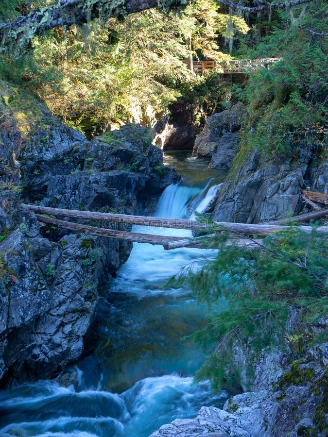 Lange blootstellingsrivier op het eiland van Vancouver stock afbeeldingen
