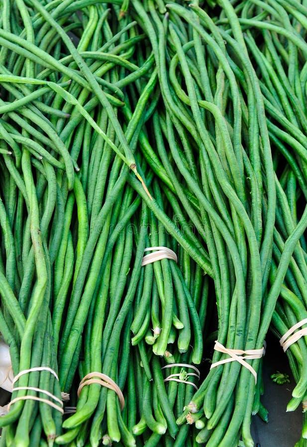 Lange Bohnen stockfotografie