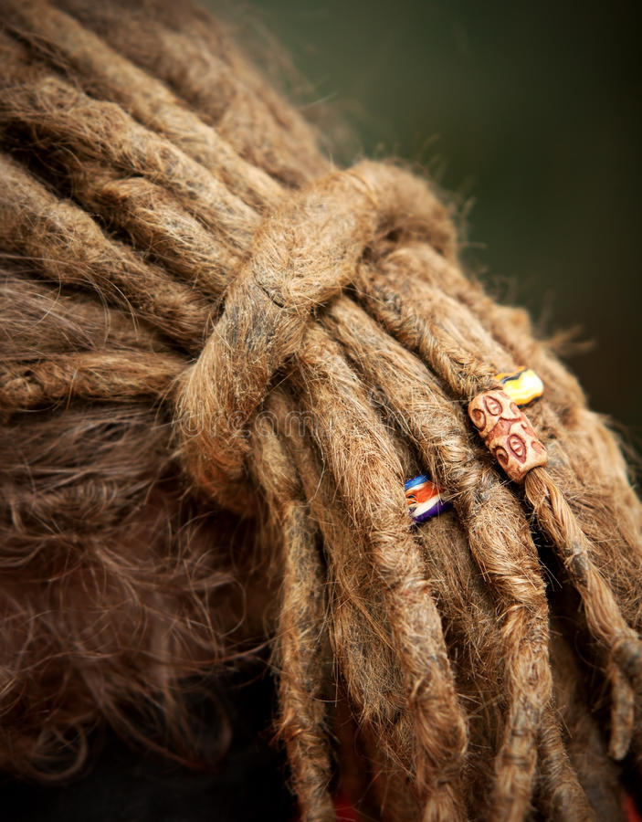 Lange dreadlocks royalty-vrije stock foto