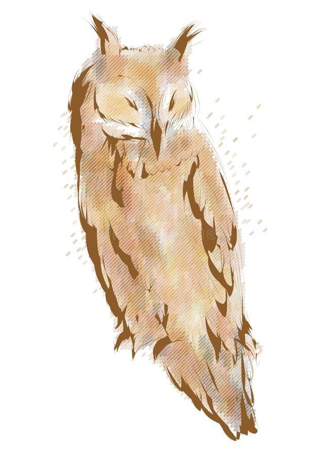 Lange eared uil vector illustratie
