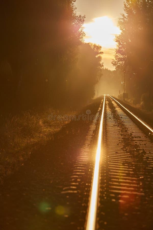 Lange Eisenbahn in einem Sonnenunterganglicht lizenzfreie stockfotografie