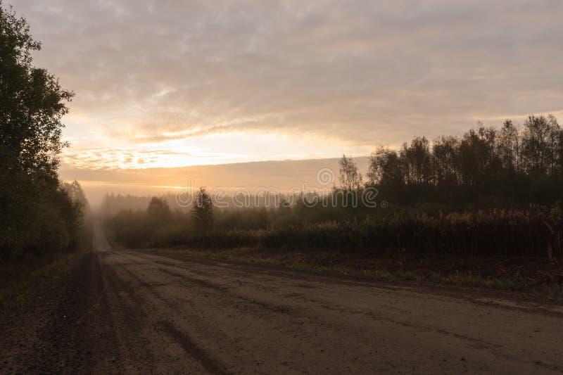 Lange grintweg in platteland bij ochtend royalty-vrije stock foto
