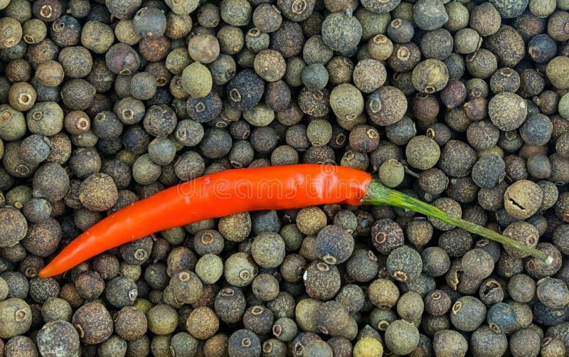 Lange Hülse des scharfen Paprikas des roten Pfeffers auf dem vielen Hintergrund Pimentbasis von würzigen Soßen stockfotografie