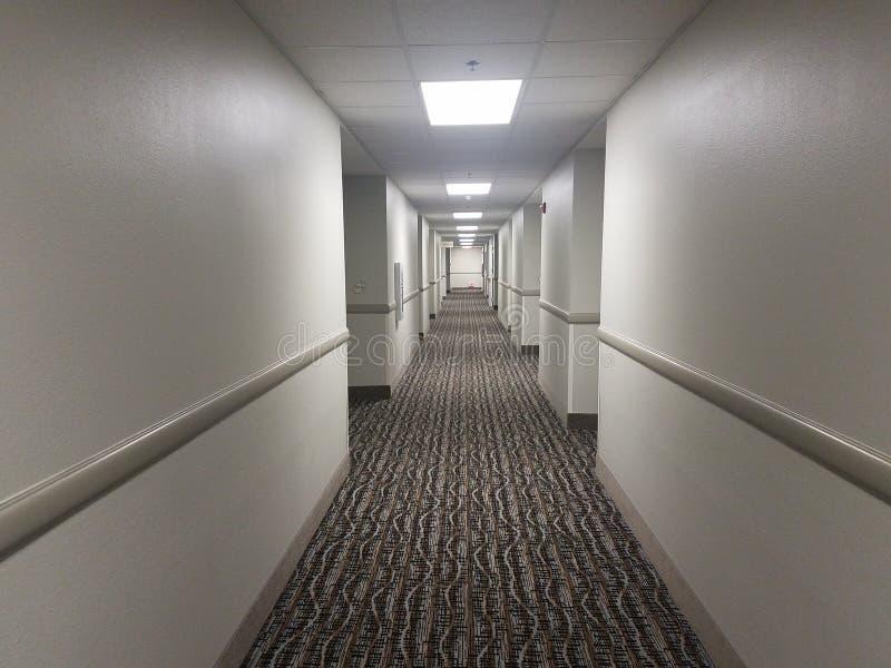 lange hotelzaal met bruin tapijt en witte muren stock foto